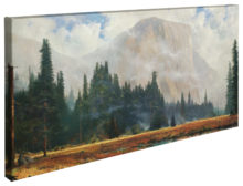 "Yosemite Meadow - 16"" x 31"" Gallery Wrapped Canvas"