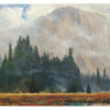 """Yosemite Meadow - 16"""" x 31"""" Gallery Wrapped Canvas"""